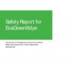 Informe de Seguridad de uso Eva Green