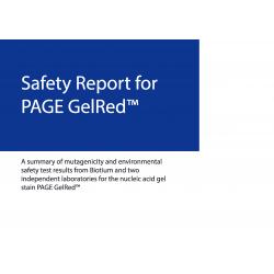 Informe de Seguridad de Uso PAGE GelRED
