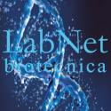 Accesorios para Agitadores Labnet Int.